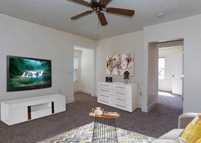 livingroom-(1)