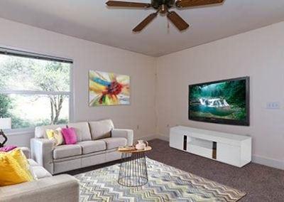 livingroom-(2)